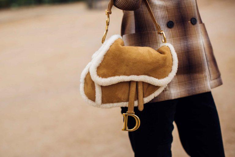 Dior Saddle Shearling SACLÀB