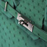 Hermès Birkin 30 Ostrich Vert Vertigo Saclàb Hardware