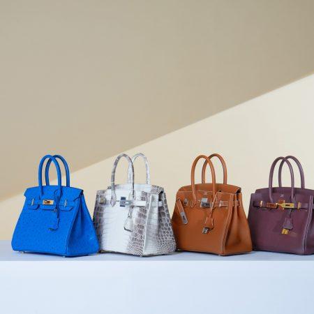 Best Complete Hermès Handbag Leather Guide