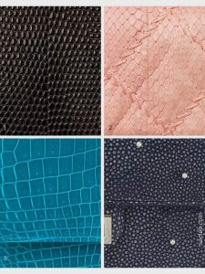 Overview Chanel Exotic leathers