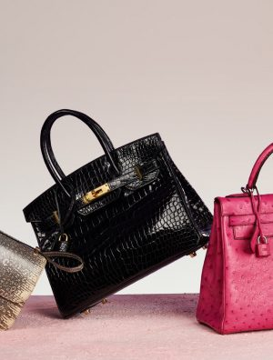 Hermès Exotic Handbags Guide