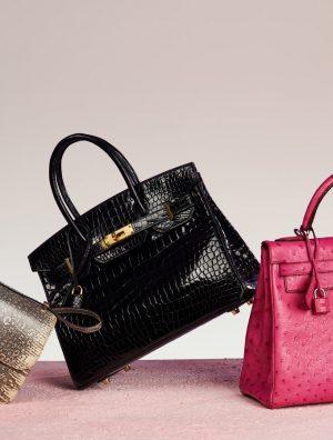 Hermès Exotic Handbags Guide