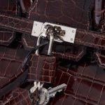 Hermès Birkin 25 Crocodile Niloticus Cocoan