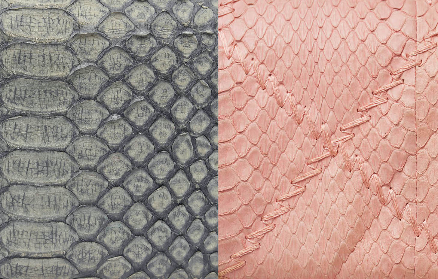 Chanel Python Skin Exotic Handbags SACLÀB