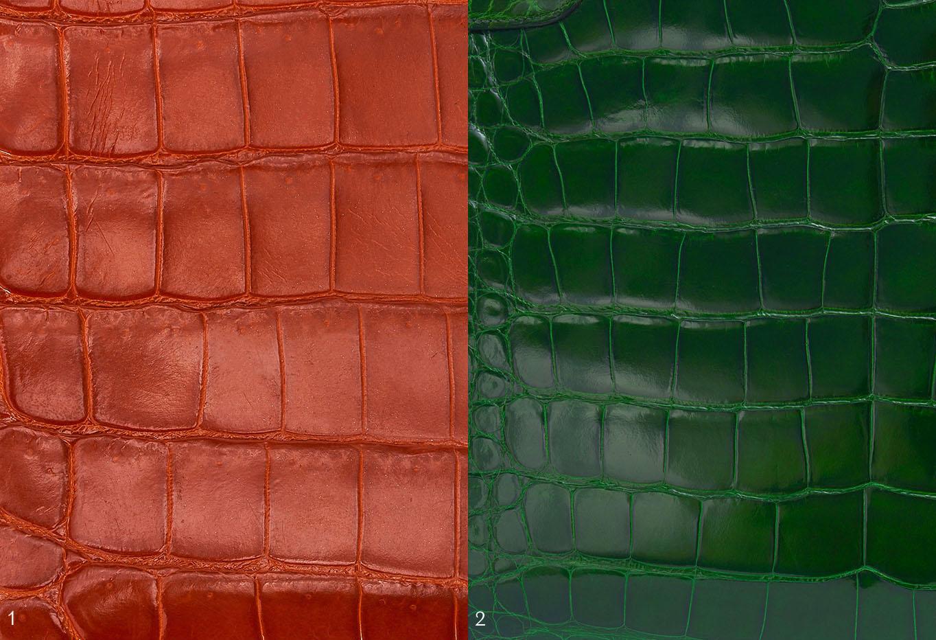 Crocodile versus Alligator Leather Hermès Exotics