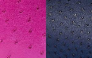 Hermès Ostrich leather
