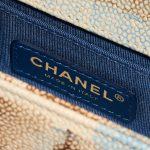 Chanel Boy Old Medium Caviar Multicolour