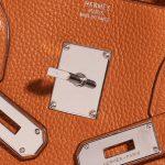 Hermès Birkin JPG Togo Orange